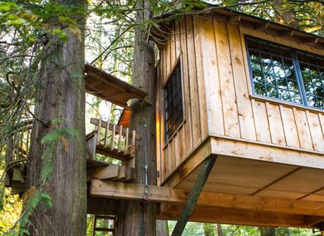 La cabane dans les arbres, un rêve d'enfant